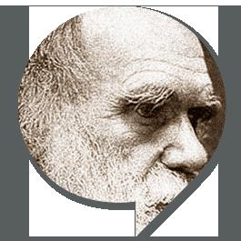 SEGNAPOSTO-BIG_darwin