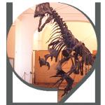 SEGNAPOSTO-BIG_visite-musei