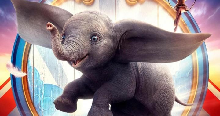 6_Dumbo