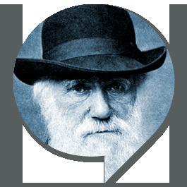 sp_Darwin2